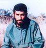 شهید محمدهادی فغانی