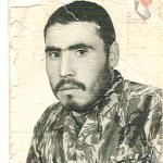 شهید حافظ سلطانی جوادحصاری